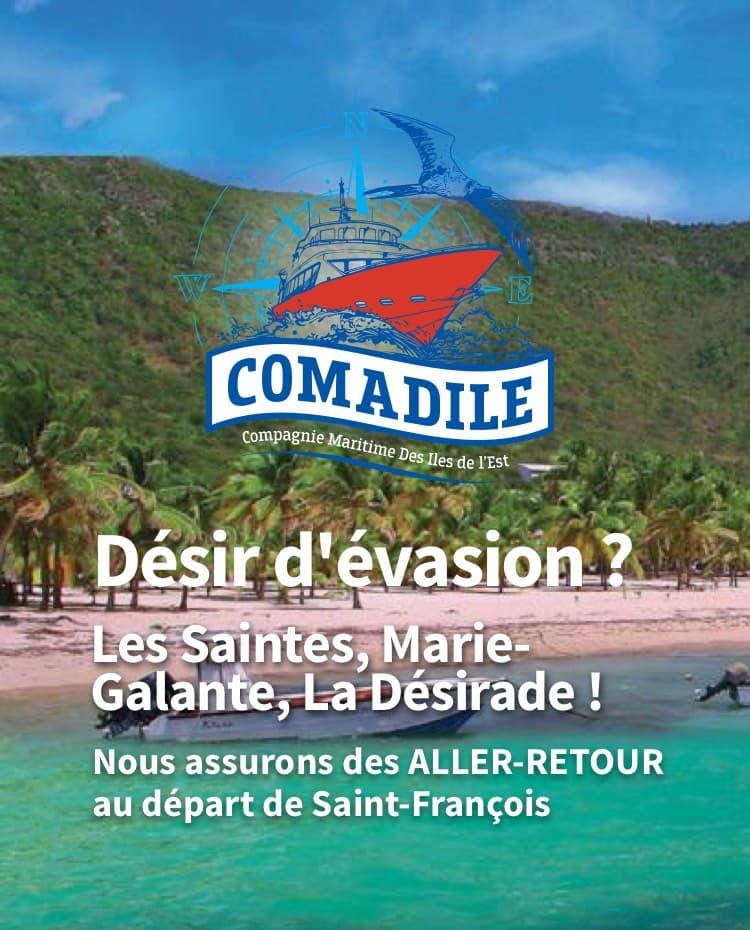 Liaisons maritimes vers les Saintes, Marie-Galante, La Désirade