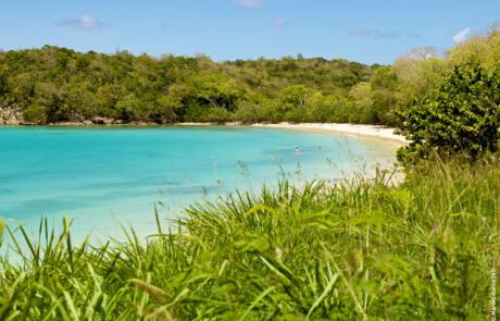 plage feuillère